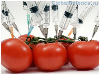 По мнению ученых ГМО продукты полезны