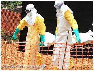 Жертвами лихорадки Эбола в Новой Гвинее стали 377 человек в стране объявили режим ЧП