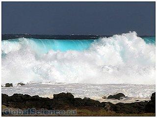 Нетихие звуки Тихого океана