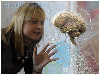 Сознание человеческого организма
