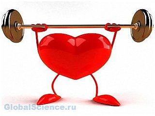 Секрет здорового сердца