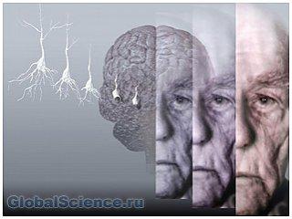 Найдена причина развития болезни Паркинсона