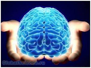 Человеческий мозг – непознанные возможности