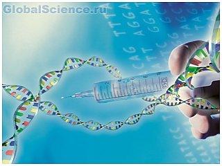 Скорость ума человека зависит от его генов