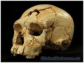В Испании обнаружены следы убийства возрастом 430 тысяч лет