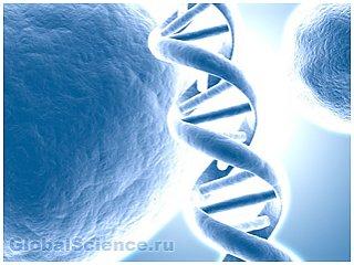Ученые объяснили феномен образования ДНК человека