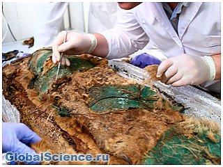 Ученые исследуют ДНК ямальской мумии