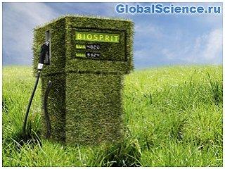 Замена нефти биотопливом не уменьшит выбросы CO2