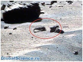 Новые факты: На Марсе нашли останки неизвестных животных