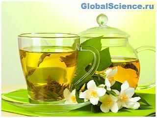 Медики уверены, что зеленый чай защитит от рака и СПИДа