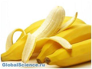 В борьбе с вирусными заболеваниями помогут бананы - ученые