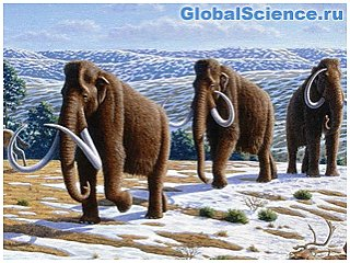 Ученые заявили о готовности воссоздать мамонтов уже через два года