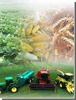 Биотопливо - людям, отходы - животным!