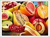 Без ГМО сегодня никуда