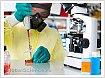 Российские ученые разработали вакцину против вируса Эбола