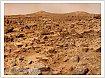 На Марс доставят семена в 2018 году