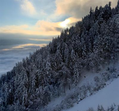 Коронавирус закрыл дорогу лыжникам из «Снежинки» в Эстонию