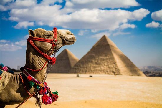 Тур в Египет: лучшие места для дайвинга в районе Шарм-эль-Шейха для новичков