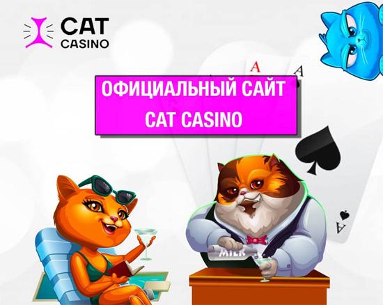 Cat Casino: Официальный сайт