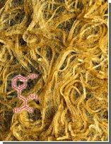 Природный гербицид помогает газонной траве выживать