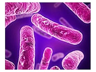 Создан быстрый и дешевый тест на туберкулез