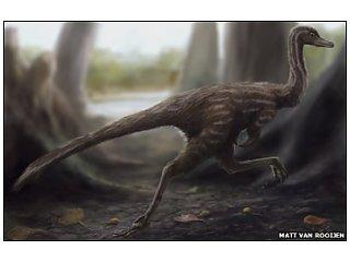 В Китае найдены окаменелые останки динозавра-бегуна
