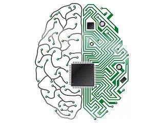 Мозг, черви и компьютеры устроены одинаково