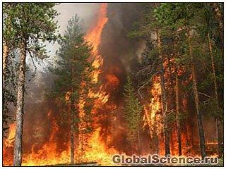 Спутниковое изображение пожаров в России