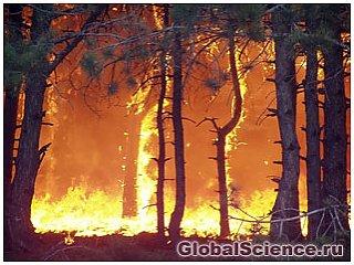 Причина пожаров в России не в глобальном потеплении