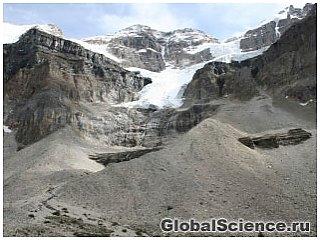Обнаружены новые ископаемые возрастом 500 миллионов лет