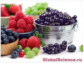 Употребление ягод поможет предупредить болезнь Паркинсона
