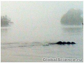 Чудовище Британского Озера: правда или мистификация?