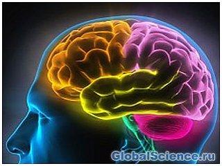 Вчені знайшли спосіб читати думки