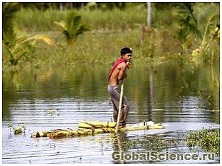 Латаття стали причиною величезного повені в Філіппінах