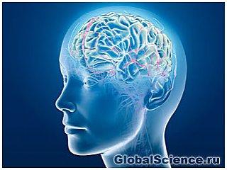 Мозговые травмы могут повысить риск развития сумасшествия