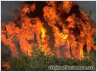 Изменение климата сильно увеличило лесные пожары в Йеллоустоун