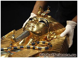 У половины европейских мужчин обнаружены гены Тутанхамона