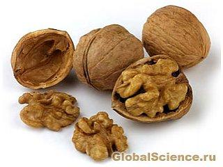 Грецкий орех защитит от рака груди