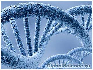 Ученые упорядочили ДНК женщины, которая прожила до 115 лет