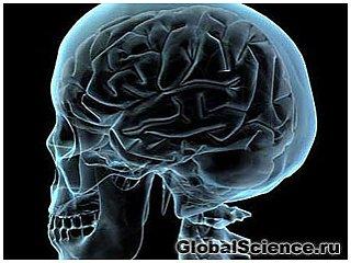 Новый класс потенциальных лекарств тормозит воспаление в мозге