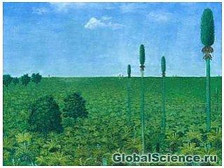 Археологи виявили під шаром попелу ліс віком 300 мільйонів років