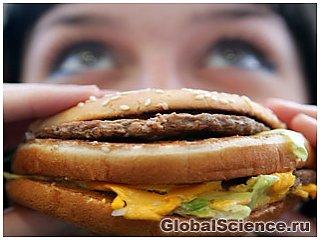 Жирная пища приводит к росту лишних клеток в мозге