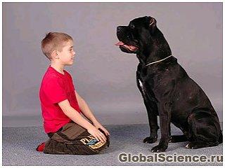 Домашні тварини захищають дітей від інфекцій