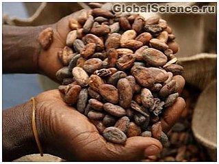 Соус из какао от племен майя