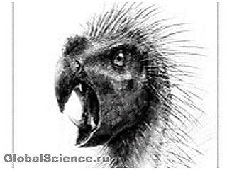 Открыт необычный вид миниатюрных динозавров