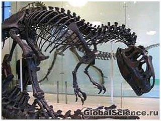 Знайдені останки динозаврів містили живі клітини