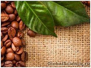 Ученые объяснили пользу чая из кофейных листьев