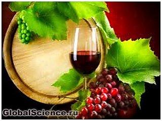 На вкус вина влияют различные виды микроорганизмов
