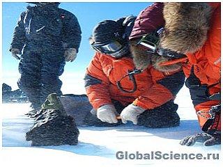 В Антарктике обнаружен крупный метеорит