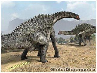 Обнаружены сотни окаменелостей яиц динозавров